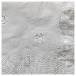 RP Napkin 2-ply White 15x17 thumbnail